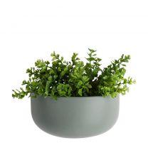 wand plantenpot Oval pt