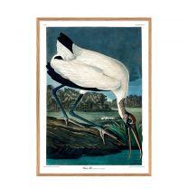 The Dybdahl Co wanddecoratie Wood Ibis (50x70 cm) (50x70 cm cm)